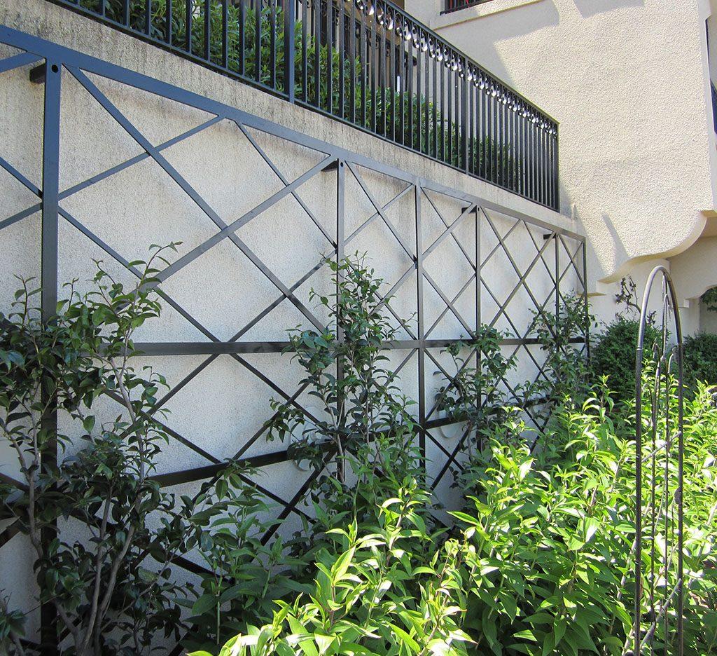 wall trelli